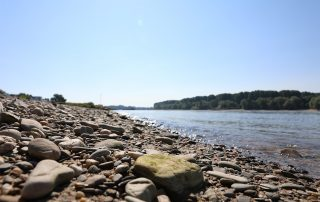 Kieselstrand am Rheinufer