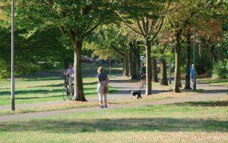 Vier Menschen und ein Hund bewegen sich in einem Park